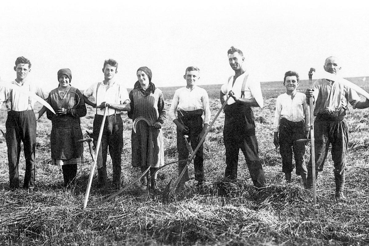 Arbeitswelten - Geschichte(n) über Handwerk und Gewerbe