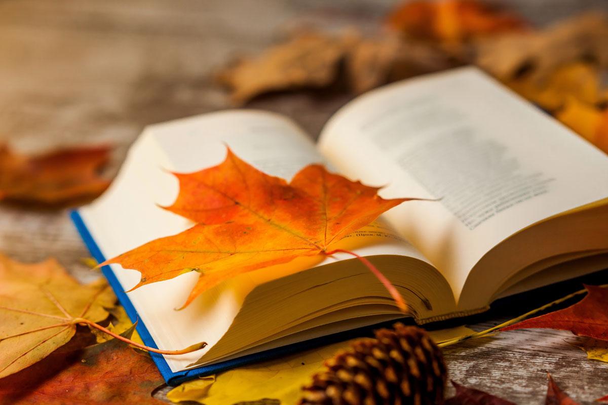 Poetischer Herbst